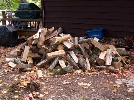 woodPile1.jpg