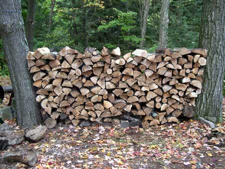 woodPile2.jpg